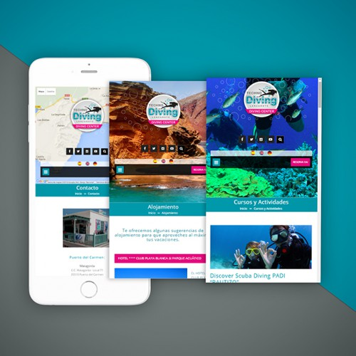 zona creatika diseño web techno diving